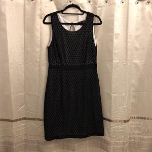 Black Dress with White Underlay
